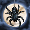 Spider: Rite of the Shrouded Moon アイコン
